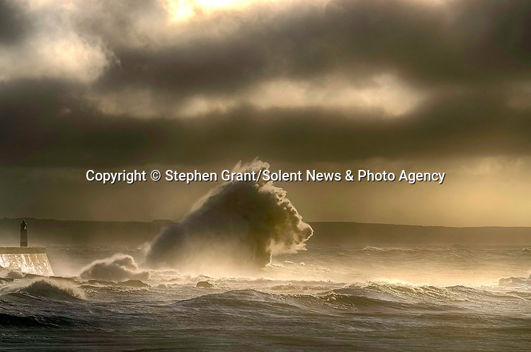 """Pictured:  The waves forming the shape of a sea horse<br /> <br /> A sea horse, wolf and lion appeared in blasts of spray as huge waves crash against a pier.  As the storm raged, giant walls of water battered the coastline and erupted in clouds above the pier, forming shapes of animals in the mist.<br /> <br /> Stephen Grant, 60, who lives in Porthcawl, Wales, with his wife Kath, caught all the images on the same morning in the seaside town.  He said: """"Storms occur throughout the year especially when the winds are blowing south-south westerly with gusts reaching up to 30mph to 40mph that cause big swells, throwing the waves over the pier, peaking at times to 20ft to 30ft high.  SEE OUR COPY FOR DETAILS.<br /> <br /> Please byline: Stephen Grant/Solent News<br /> <br /> © Stephen Grant/Solent News & Photo Agency<br /> UK +44 (0) 2380 458800"""