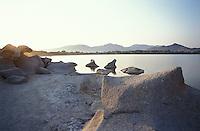 Capo Carbonara, Villasimius (Cagliari), Porto Giunco. Rocce di granito presso lo Stagno Notteri --- Cape Carbonara, Villasimius (Cagliari), Porto Giunco. Granite rocks by the Pond Notteri