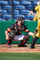 Maryland Terrapins catcher Dan Maynard (11) waits for a pitch during a game against the Alabama State Hornets on February 19, 2017 at Spectrum Field in Clearwater, Florida.  Maryland defeated Alabama State 9-7.  (Mike Janes/Four Seam Images)