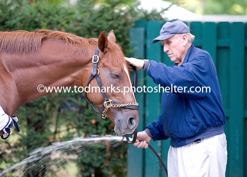 Admiral Alex and owner-trainer Leon Blusiewicz prepare for the Travers.