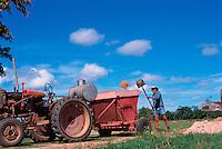 Filling the Hopper, David Adil, Adil's Farm, Mareeba, 2003.