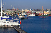 Gloucester, MA, Massachusetts, Fishing boats moored at the marina in the Inner Harbor of Rocky Neck in Gloucester in the fall.