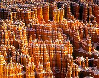 hoodoo formations at sunrise, Bryce Canyon National Park, Utah, USA