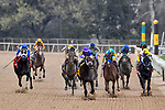 HOT SPRINGS, AR - MARCH 17: #4 Magnum Moon with jockey Luis Saez leading race. Rebel Stakes at Oaklawn Park on March 17, 2018 in Hot Springs, Arkansas. (Photo by Ted McClenning/Eclipse Sportswire/Getty Images)