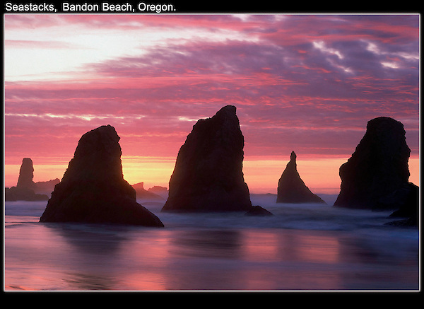 Don't ever turn your back on the sea. Seastacks at sunset.<br />