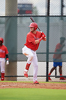 GCL Phillies West Rixon Wingrove (52) bats during a Gulf Coast League game against the GCL Tigers West on July 27, 2019 at the Carpenter Complex in Clearwater, Florida.  (Mike Janes/Four Seam Images)