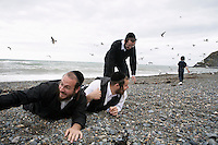 Having spent the last twenty minutes feeding the sea gulls, the Hasidic men of the Stern family get ready for a group photograph on the beach in Aberystwyth.