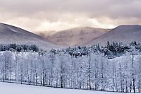 Moods of Mt. Greylock
