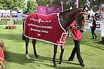 October 02, 2016, Chantilly, FRANCE -  National Defense after winning the Prix de'l Opera Longines (Gr. I) at  Chantilly Race Course  [Copyright (c) Sandra Scherning/Eclipse Sportswire)