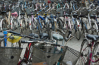 Rows of bicycles in a parking lot in Xian, Shaanxi, China.