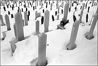 Kosevo cemetery. During the siege of the city in the early 1990ís the deceased were buried wherever there was space. This cemetery was once part of the grounds for the Winter Olympic Games held in 1984. Sarajevo, Bosnia-Herzegovina, December 1999 © Stephen Blake Farrington<br />