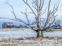 Winter landscape in rural Montana