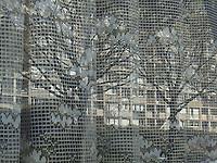 The reflected image of some characteristic Parisian buildings and trees on a window with a white pierced curtain, in a quiet atmosphere (Paris, 2007).<br /> <br /> L'immagine riflessa di alcuni caratteristici edifici Parigini e di alberi su una finestra con una tendina bianca traforata, in un'atmosfera tranquilla (Parigi, 2007)