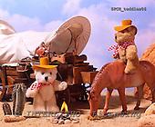 Xavier, CUTE ANIMALS, teddies, photos, SPCHTEDDIES06,#ac#
