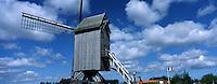 Europe/France/Nord Pas-de-Calais/59/Nord/Hondschoote: Moulin à vent, le moulin de la Victoire Spinnewyn