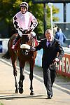 Horse Racing - The Curragh Racecourse - The Irish Field St Leger.Longhunter win the Irish Field Blenheim Stakes at the Curragh Racecourse.