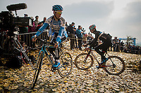 Kevin Pauwels (BEL/Marlux-NapoleonGames) warming up just before the race by riding up the Koppenberg. <br /> Autumn leafs cover it's infamous cobbles.<br /> <br /> 25th Koppenbergcross 2016