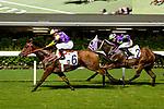 Jockey #6 Karis Teetan (L) riding Noble Delight leads race 4 during Hong Kong Racing at Happy Valley Racecourse on July 04, 2018 in Hong Kong, Hong Kong. Photo by Marcio Rodrigo Machado / Power Sport Images