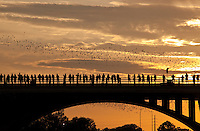 Sunset falls on the Congress Ave. Bridge above Lake Austin as the Mexican Free-tailed bats make their nightly exodus to feed on insects