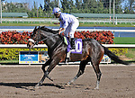 06 February 2010:  Pow Wow with jockey Jeremy Rose in the Sixth race at Gulfstream Park in Hallandale Beach, FL.