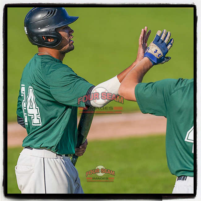 Robbie McGaha (24) of the University of South Carolina Upstate Spartans Green team is greeted after hitting a home run in the Green and Black Fall World Series Game 3 on Sunday, November 1, 2020, at Cleveland S. Harley Park in Spartanburg, South Carolina. Green won, 3-2. (Tom Priddy/Four Seam Images)
