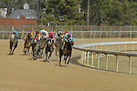3rd race at Oaklawn Park in Hot Springs, Arkansas on February 17, 2014. (Credit Image: © Justin Manning/Eclipse/ZUMAPRESS.com)