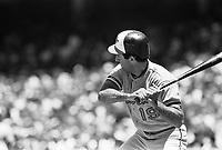 Fred Lynn of the Baltimore Orioles during a 1988 season game at Anaheim Stadium,in Anaheim,California.(Larry Goren/Four Seam Images)
