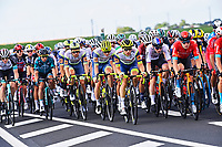 1st July 2021; Chateauroux, France;  Peloton during stage 6 of the 108th edition of the 2021 Tour de France cycling race, a stage of 160,6 kms between Tours and Chateauroux on July 1