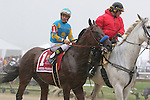 May 16, 2015: American Pharoah, Victor Espinoza up, takes part in the post parade before winning the Preakness Stakes at Pimlico Race Course in Baltimore, MD. Trainer is Bob Baffert; owner is Ahmed Zayed. Joan Fairman Kanes/ESW/CSM