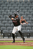Fayetteville Woodpeckers Michael Papierski (28) at bat during a Carolina League game against the Down East Wood Ducks on August 13, 2019 at SEGRA Stadium in Fayetteville, North Carolina.  Fayetteville defeated Down East 5-3.  (Mike Janes/Four Seam Images)