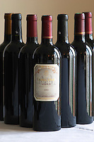 Bottle of Chateau d'Aydie 2001 Madiran France