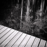 Reflection of trees in water off pier<br />