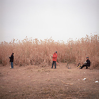 Chinese men fly kites in front of a wall of reeds along the riverbank of Chang Jiang, or Yangtze River, in Wuhan, Hubei province, December 2011. (Mamiya 6, 75mm f3.5, Kodak Ektar 100 film)