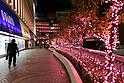 Christmas illuminations in Shinjuku