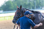 July 18, 2020: Turned Aside #8 ridden by Jose Lezcano wins the Quick Call S at Saratoga Race Course in Saratoga Springs, New York. Rob Simmons/Eclipse Sportswire/CSM