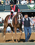 Lexington KY - October 6 Whitmore wins the 165th running of the Stoll Keenon Ogden Phoenix (Grade 2) for ownersRobert LaPenta, Southern Springs Stables and Head of Plains Partners, trainer Ron Moquett and jockey Manuel Franco.  October 6, 2017