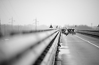 peloton crossing the bridge over the Po river<br /> <br /> 106th Milano - San Remo 2015