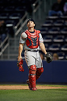 Pawtucket Red Sox catcher Dan Butler (12) during a game against the Scranton/Wilkes-Barre RailRiders on May 15, 2017 at PNC Field in Moosic, Pennsylvania.  Scranton defeated Pawtucket 8-4.  (Mike Janes/Four Seam Images)