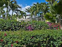 Coco De Mer. Barbados