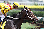 Eventual winner, Rachel Alexandra with Calvin Borel up pass the stands for the first time in The Fleur De Lis Handicap (grII) at Churchill Downs. 06.12.2010