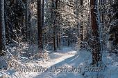 Marek, CHRISTMAS LANDSCAPES, WEIHNACHTEN WINTERLANDSCHAFTEN, NAVIDAD PAISAJES DE INVIERNO, photos+++++,PLMP01008Z,#xl#
