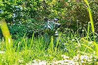 Bronzefigur Waldmops zu Ehren des Humoristen Vicco von Bülow (Loriot), Brandenburg an der Havel, Brandenburg, Deutschland