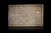 Picture of a Roman mosaics design depicting shells and birds, from the ancient Roman city of Thysdrus. 3rd century AD, House of Selinus. El Djem Archaeological Museum, El Djem, Tunisia. Against a balck background