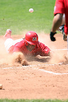 September 1 2008:  Catcher Christian Rosa of the Batavia Muckdogs, Class-A affiliate of the St. Louis Cardinals, during a game at Dwyer Stadium in Batavia, NY.  Photo by:  Mike Janes/Four Seam Images