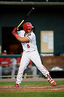 Harrisburg Senators catcher Raudy Read (8) at bat during a game against the Erie SeaWolves on August 29, 2018 at FNB Field in Harrisburg, Pennsylvania.  Harrisburg defeated Erie 5-4.  (Mike Janes/Four Seam Images)