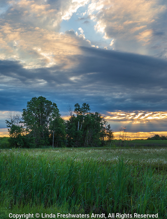 Sunrise over a northern Wisconsin farm field.