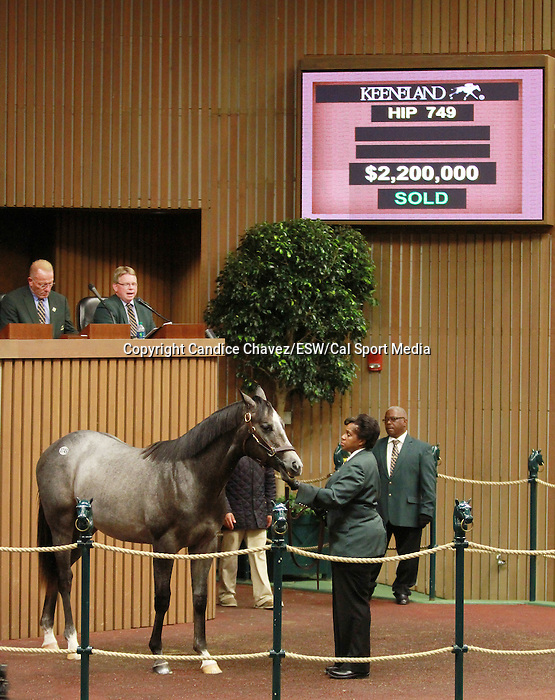 September 11, 2014: Hip #749 Tapit - Justwhistledixie colt consigned by Clearsky Farms, sold for $2,200,000 to Shadwell Farm at the Keeneland September Yearling Sale.   Candice Chavez/ESW/CSM