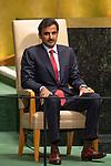 DSG meeting<br /> <br /> AM Plenary General DebateHis<br /> <br /> <br /> His Highness Sheikh Tamim bin Hamad Al -Thani, Emir, State of Qatar