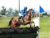 Sermon of Love and Darren Nagle mounted a large early lead in the Gwathmey.