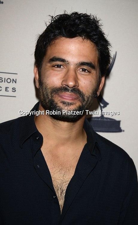 Ignacio Serricchio attends the Academy Of Television Arts & Science Daytime Programming  Peer Group Celebration for the 40th Annual Daytime Emmy Awards Nominees party on June 13, 2013 at the Montage Beverly Hills in Beverly Hills, California.